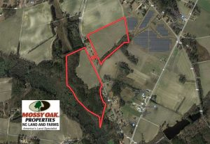 UNDER CONTRACT!!  67 Acres of Farm and Timber Land For Sale in Robeson County NC!