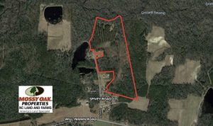 REDUCED!  44.73 Acres of Hunting and Residential Land For Sale in Columbus County NC!
