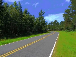 SOLD!!  11 acres of Residential and Hunting Land for Sale in Columbus County NC!