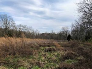SOLD!!  20.01 Ac of Hunting and Farm Land For Sale in Brunswick County VA!