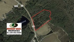 SOLD!! 12.4 Acres of Hunting and Timber Land For Sale in Robeson County NC!