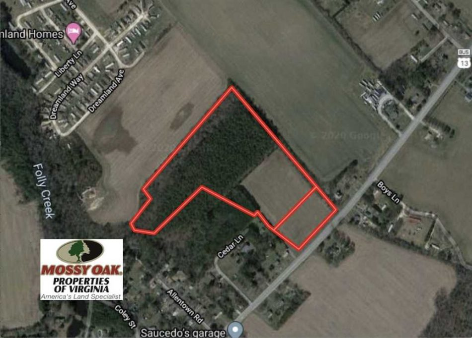 Under Contract 20 Acres Of Farm And Timber Land For Sale In Accomack County Va Mossy Oak Properties Virginia