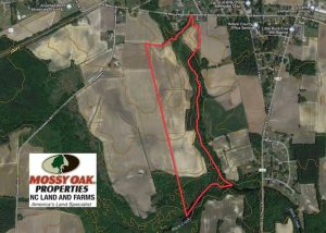 SOLD!!  81.75 Acres of Farm and Timber Land For Sale in Wilson County NC!