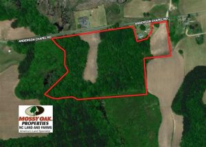 UNDER CONTRACT!!  26 Acres of Farm and Timber Land For Sale in Pitt County NC!