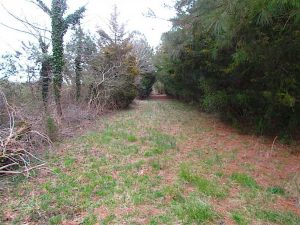 UNDER CONTRACT!!  69 Acres of Land with Farm House and Great Views in Accomack County VA!