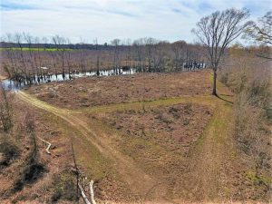 172 Acres of Hunting Land For Sale in Craven County NC!