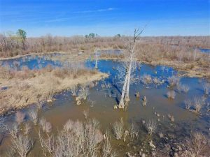 SOLD!!  172 Acres of Hunting Land For Sale in Craven County NC!