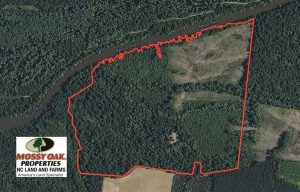 UNDER CONTRACT!!  172 Acres of Hunting Land For Sale in Craven County NC!