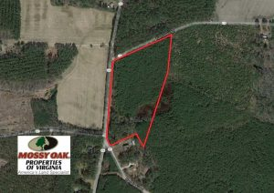 SOLD!!  20 Acres of Hunting and Timber Land For Sale in Sussex County VA!