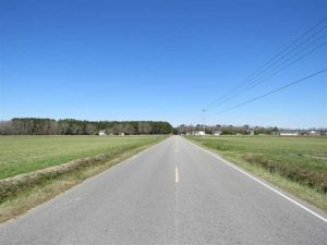UNDER CONTRACT!  73 Acres of Farm and Timber Land For Sale in Robeson County NC!