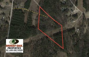12 Acres of Residential and Timber Land for Sale in Wake County NC!