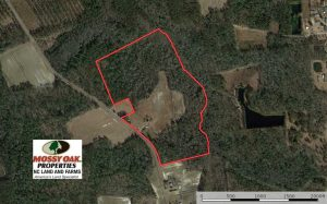 SOLD!!  42 Acres of Farm and Hunting Land For Sale in Columbus County NC!