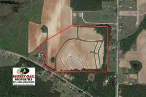 SOLD!!  26.8 Acres of Farm and Timber Land For Sale in Nash County NC!