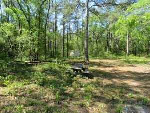 SOLD!!  9 Acres of Residential and Hunting Land in Pender County NC!