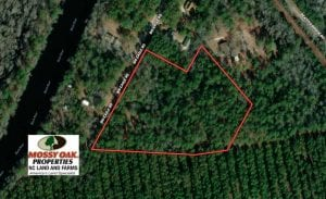 9 Acres of Residential and Hunting Land in Pender County NC!