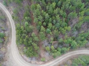 REDUCED! 33 Acres of Residential and Hunting Land in Alleghany County VA!