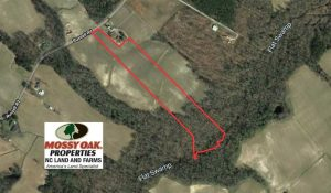 18.78 Acres of Farm and Cut Timber Land For Sale in Craven County NC!