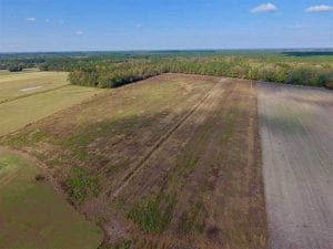 REDUCED!  43.57 Acres of Farm and Timber Land For Sale in Craven County NC!