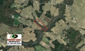 33.62 Acres of Farm and Hunting Land For Sale in Craven County NC!