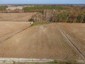 17.98 Acres of Farm and Hunting Land For Sale in Craven County NC!