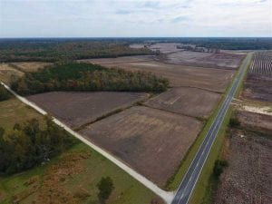 REDUCED!  90.1 Acres of Farm and Timber Land For Sale in Craven County NC!