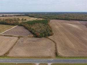 UNDER CONTRACT!!  90.1 Acres of Farm and Timber Land For Sale in Craven County NC!