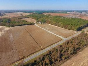 SOLD!!  42.75 Acres of Farm and Timber Land For Sale in Craven County NC!