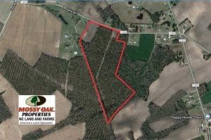 SOLD!! 39 Acres of Farm and Timber Land For Sale in Chowan County NC!