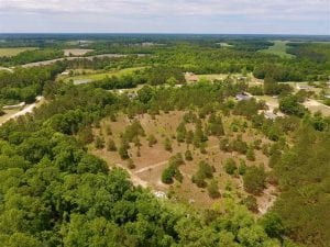 16.9 Acres of Timber and Recreational Land For Sale in Sampson County NC!