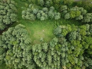 15.67 Acres of Residential and Hunting Land For Sale in Pulaski County VA!
