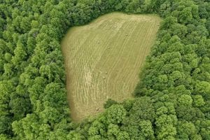 SOLD!!  54 Acres of Hunting and Recreational Land For Sale in Franklin County VA!