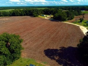 19 Acres of Farm Land For Sale in Robeson County NC!