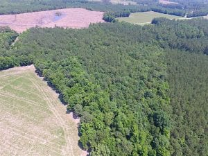 UNDER CONTRACT!!  16 Acres of Hunting Land For Sale in Southampton County VA!