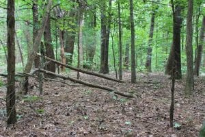 SOLD!!  5.00 Acres of Residential Land For Sale in Cumberland County VA!