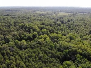 UNDER CONTRACT!!  43.18 Acres of Residential and Recreational Land in Cumberland County VA!
