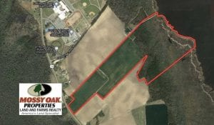 98 Acres of Waterfront Farm and Development Land in Currituck County NC!