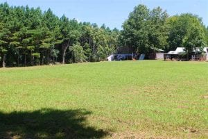 UNDER CONTRACT!!  81.72 Acres of Rural Residential and Recreational Land For Sale in Greensville County VA!