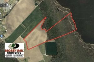 UNDER CONTRACT!!  66 Acres of Waterfront Farm and Development Land in Currituck County NC!