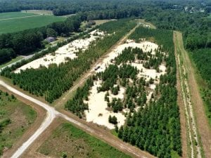 28.67 Ac Commercial Development Tract For Sale in Gates County NC!