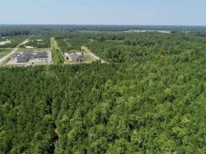 26.75 Ac Commercial Development Tract For Sale in Gates County NC!