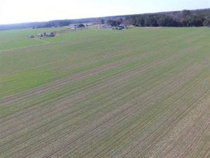 SOLD!  30 Acres of Recreational Land For Sale in Accomack County VA!