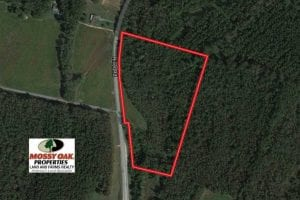 13.67 Acres of Timber and Recreational Land For Sale in Cumberland County NC!
