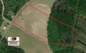 SOLD!!  30 Acres of Residential Farm and Timber Land For Sale in Robeson County NC!