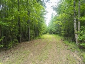 SOLD!!  10.01 Acre Homesite For Sale in Orange County NC!