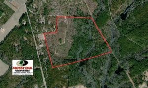 107 Acres of  Development and Timber Land For Sale in Hoke County NC!