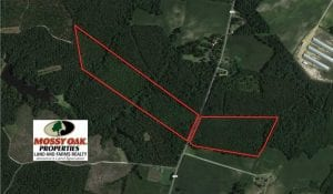 SOLD!!  47.5 Acres of Residential and Recreational Land For Sale in Duplin County NC!