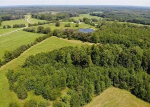 78.77 Acres of Residential Farm and Hunting Land For Sale in Cumberland County VA!