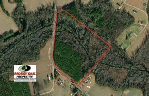 SOLD!!  26 Acres of Timber Land For Sale in Robeson County NC!