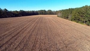 8 Acres of Farm and Timber Land For Sale in Robeson County NC!
