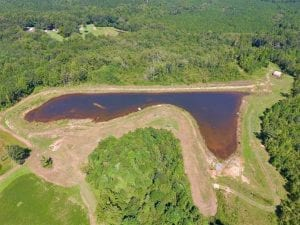 UNDER CONTRACT!!  200 Acres of Hunting Timberland and Agriculture Land For Sale with Pond in Warren County NC!